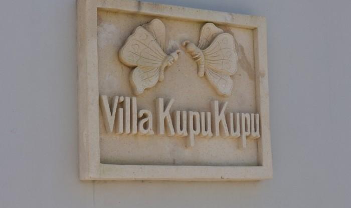 Villa Kupu Kupu #317